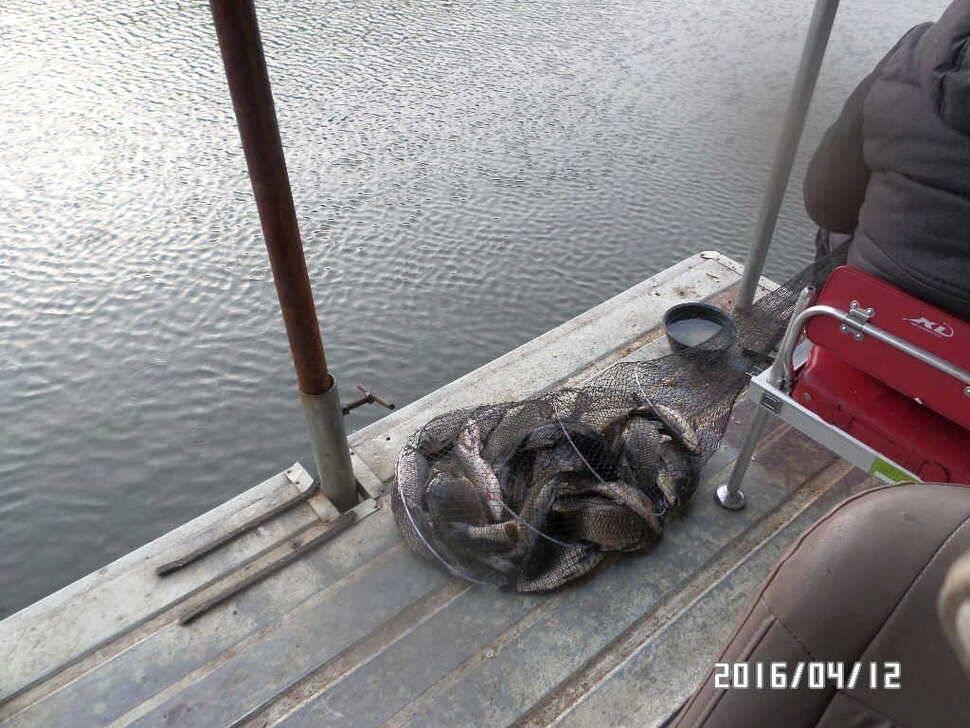 fish_pay_07490120.jpg