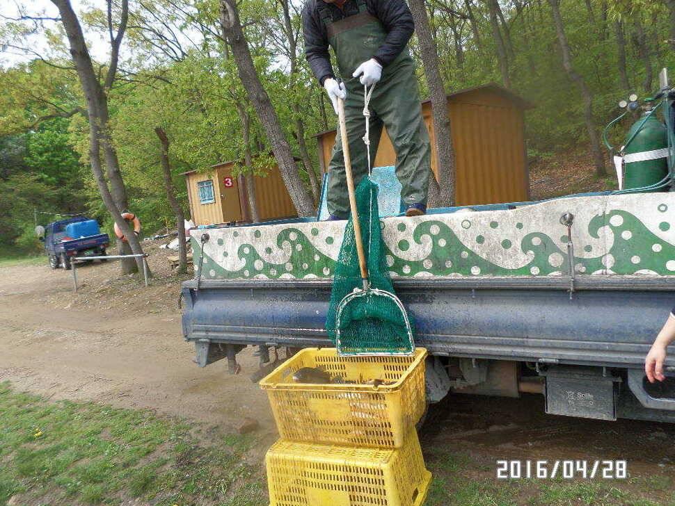 fish_pay_07491352.jpg