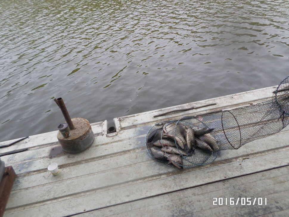fish_pay_07503530.jpg