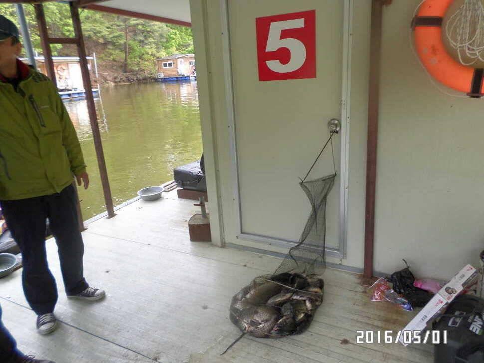 fish_pay_07503955.jpg