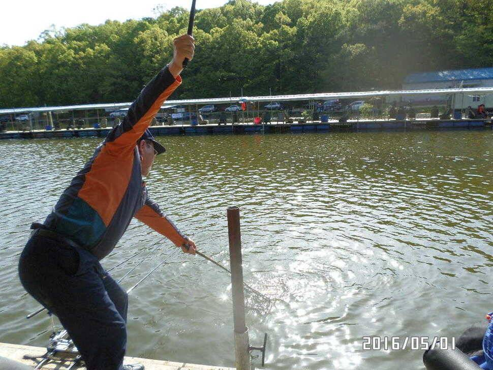 fish_pay_0750548.jpg