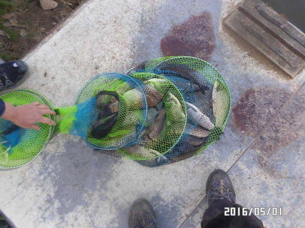 fish_pay_07505874.jpg