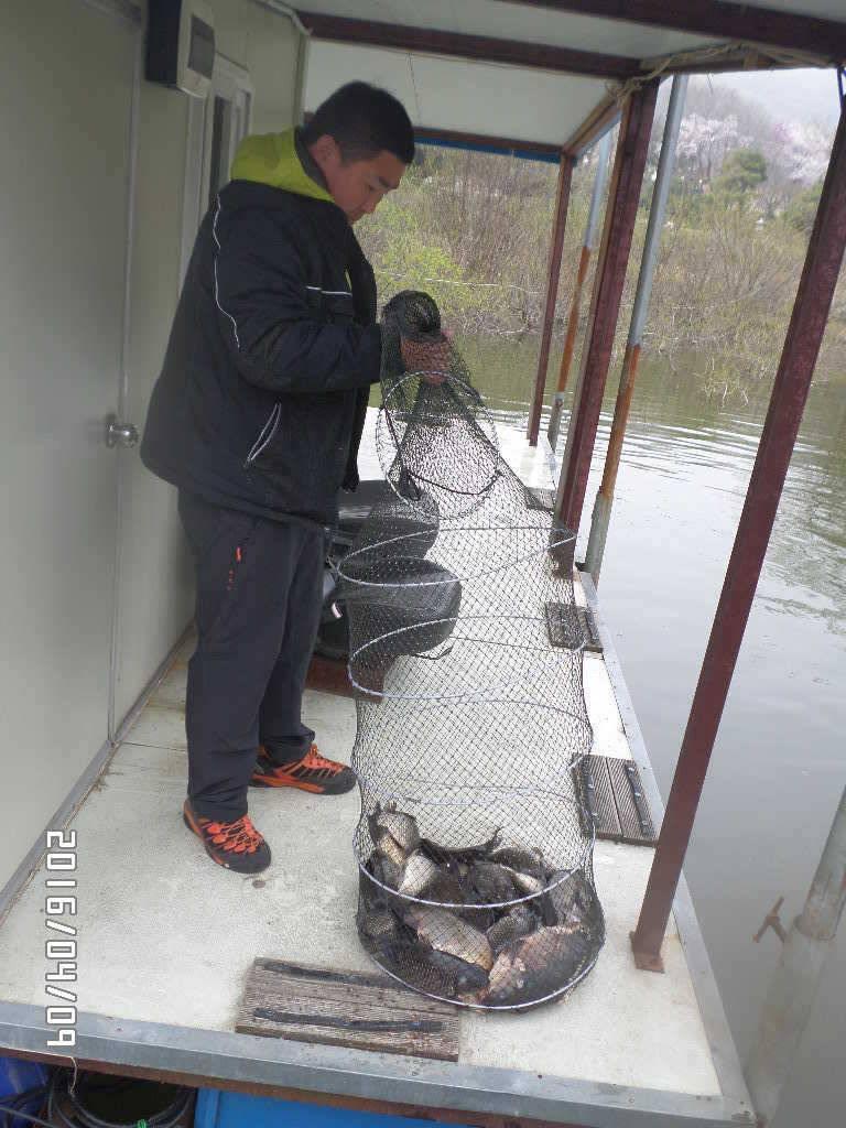 fish_pay_07542362.jpg