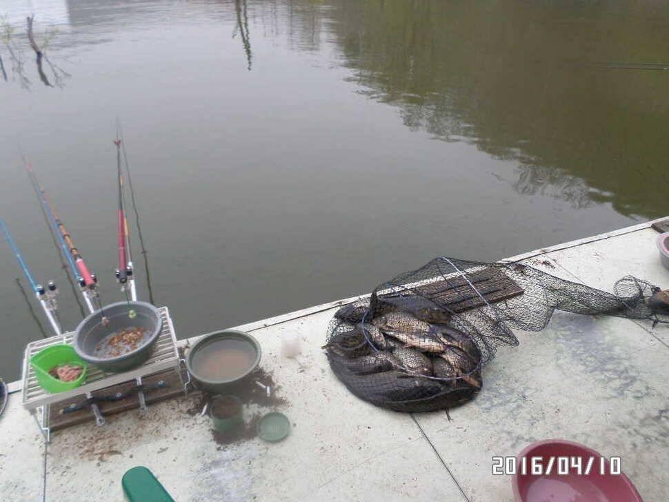 fish_pay_07560478.jpg