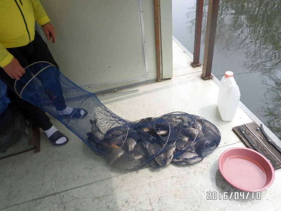 fish_pay_07562869.jpg