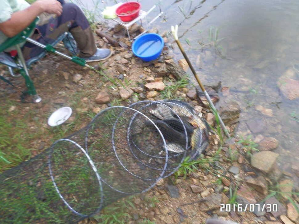 fish_pay_08001353.jpg