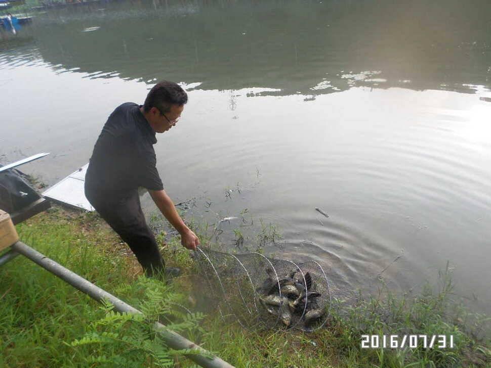 fish_pay_08004231.jpg