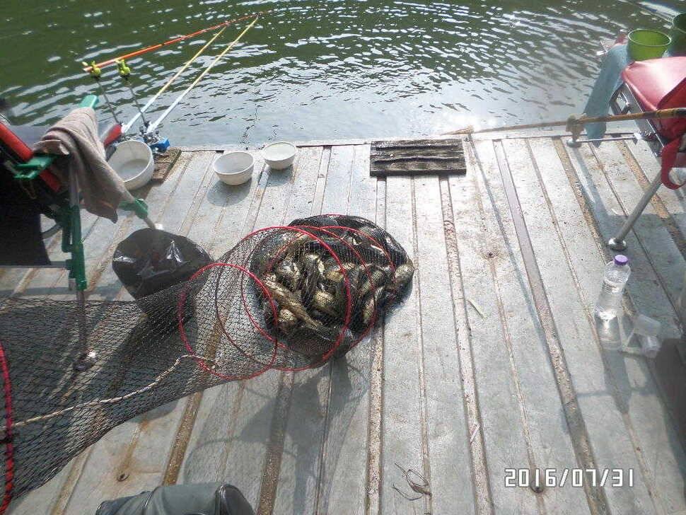fish_pay_08005495.jpg