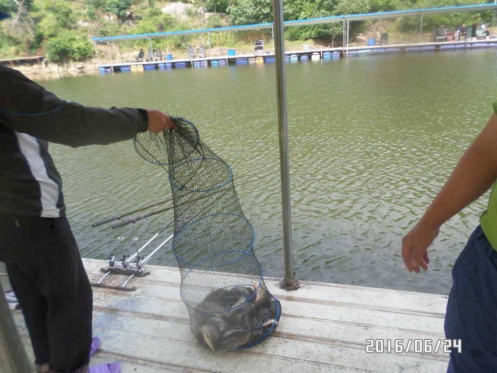 fish_pay_08020420.jpg