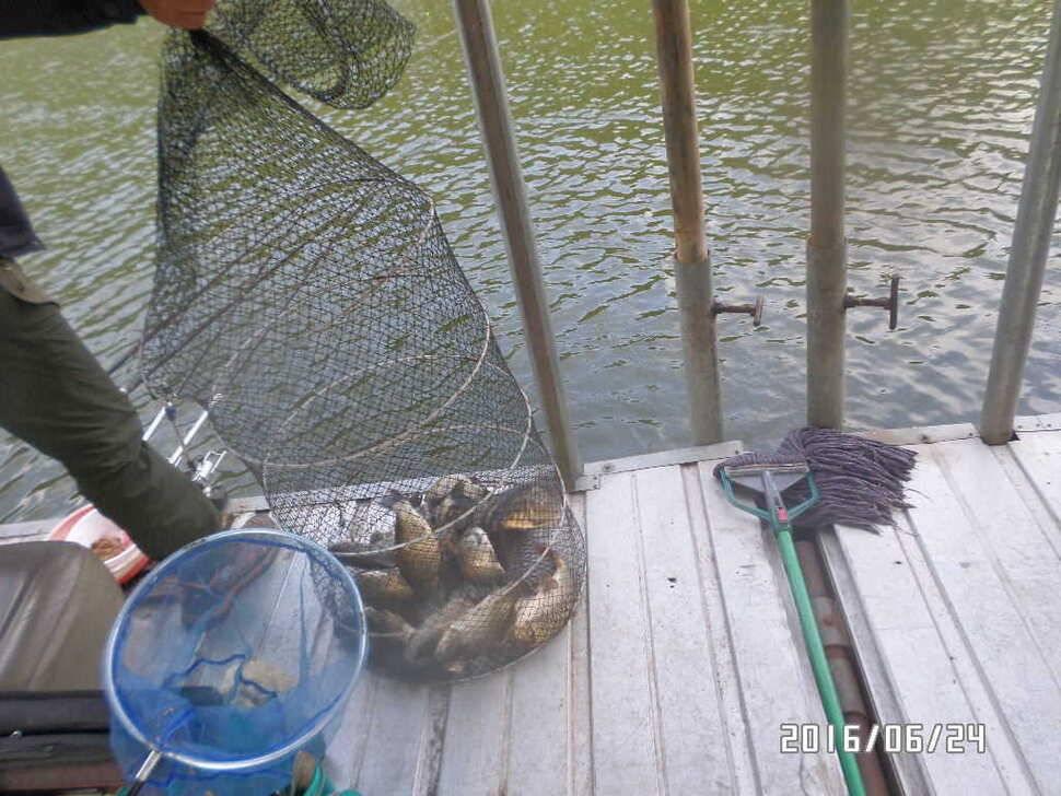 fish_pay_08021048.jpg