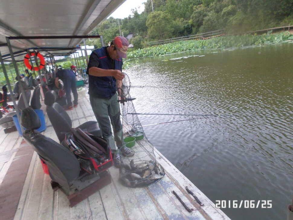fish_pay_08035399.jpg