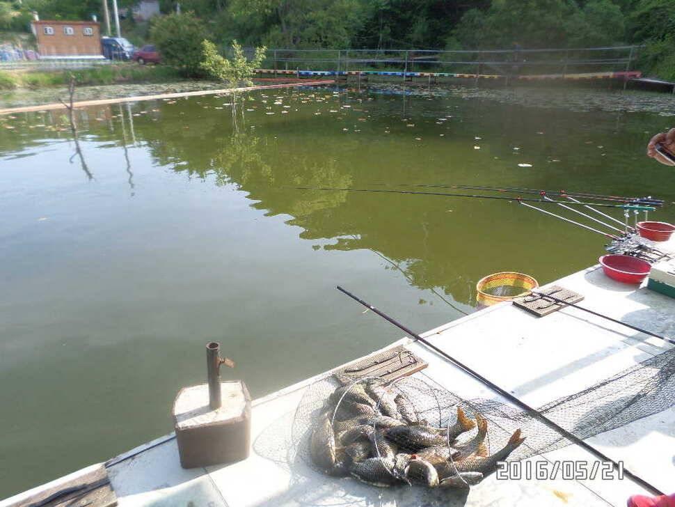 fish_pay_08095718.jpg
