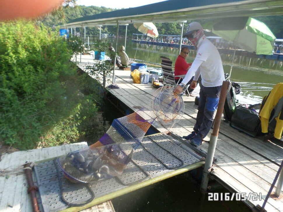 fish_pay_08102575.jpg