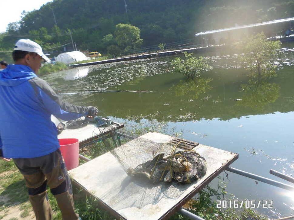 fish_pay_08114922.jpg