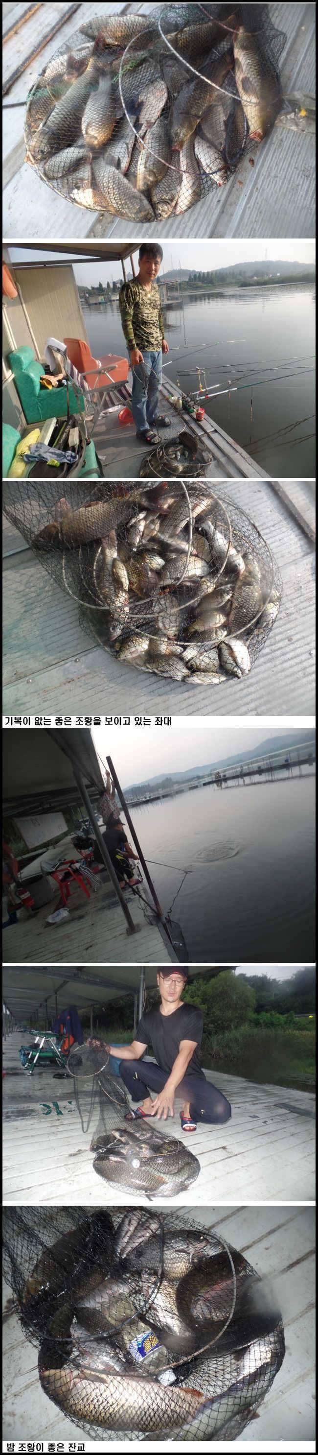 fish_pay_08144054.jpg