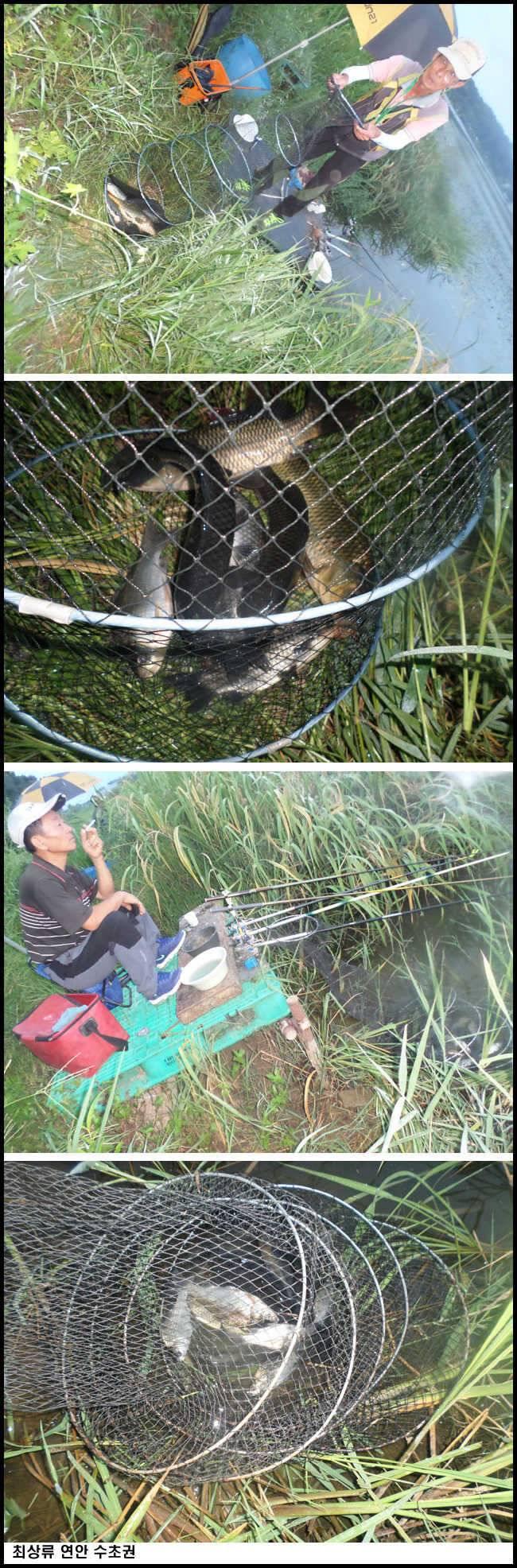fish_pay_08144372.jpg