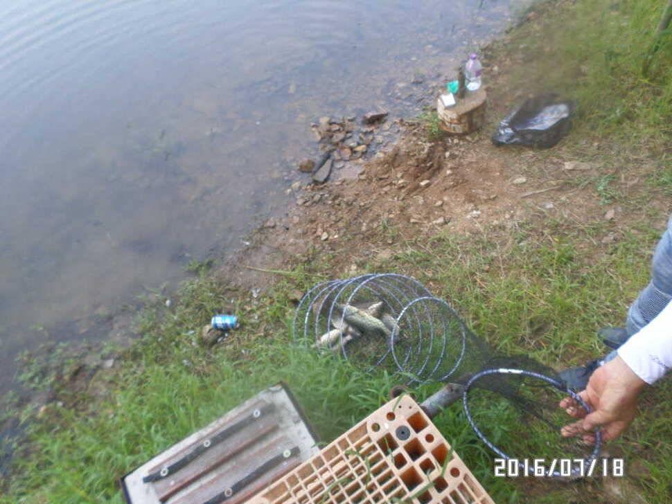 fish_pay_08145943.jpg