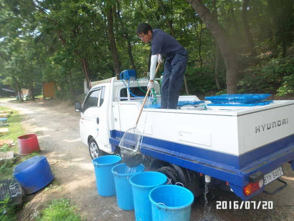 fish_pay_08154597.jpg