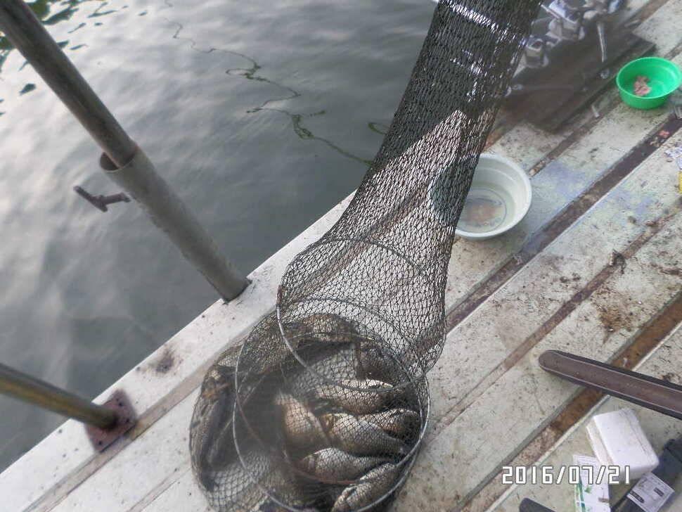 fish_pay_08160593.jpg
