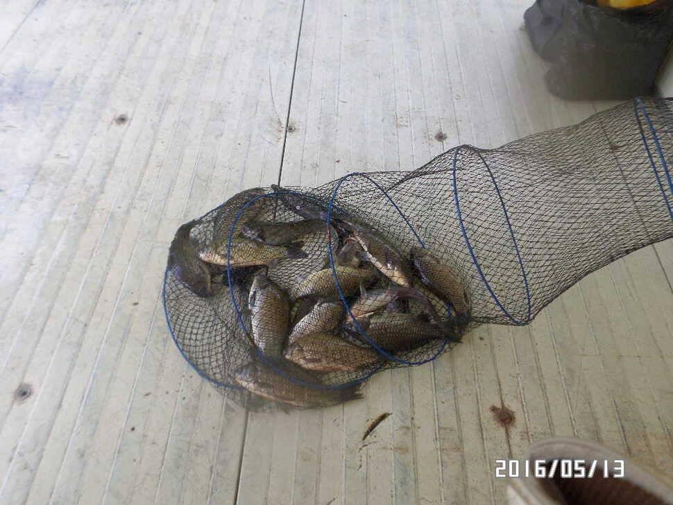 fish_pay_08170966.jpg
