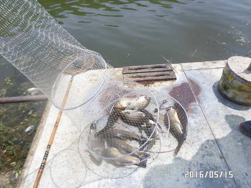 fish_pay_08184026.jpg