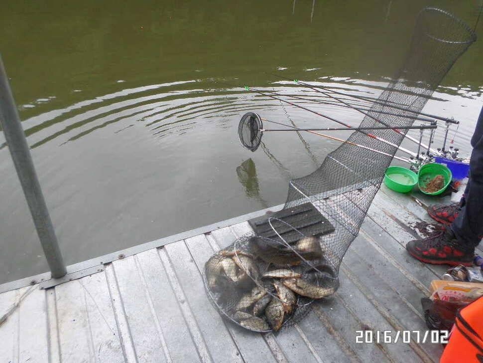 fish_pay_08195685.jpg