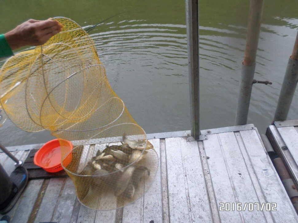 fish_pay_082001100.jpg