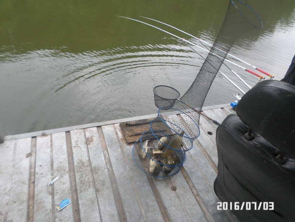 fish_pay_08211994.jpg