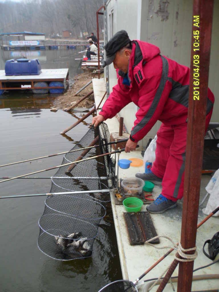 fish_pay_08294257.jpg
