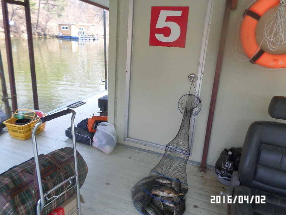 fish_pay_08310315.jpg