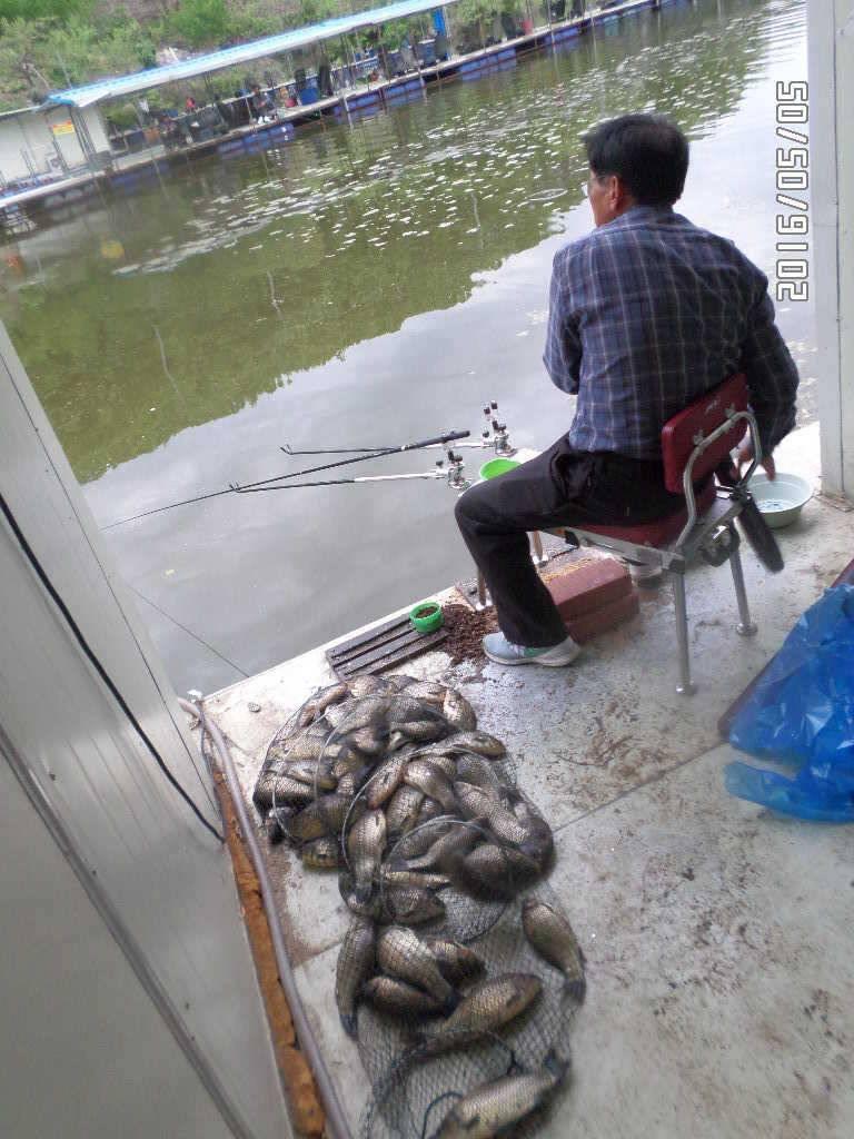 fish_pay_08345944.jpg