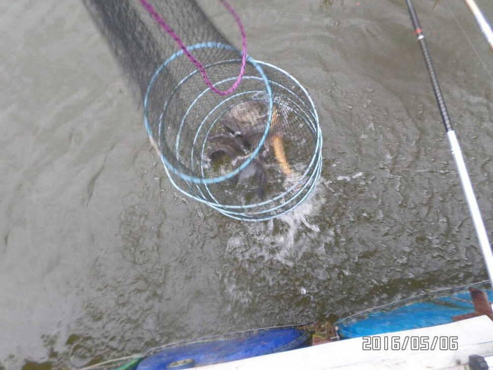 fish_pay_08350217.jpg