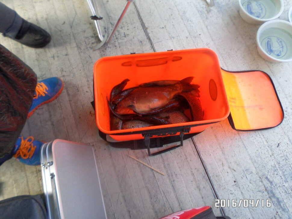 fish_pay_08411674.jpg