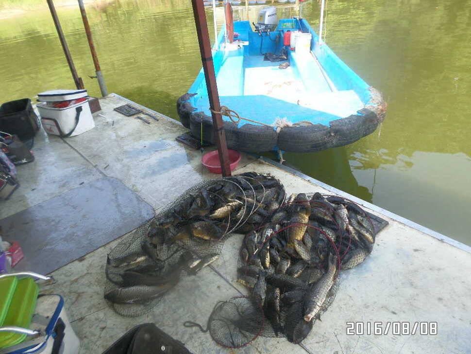 fish_pay_08412092.jpg