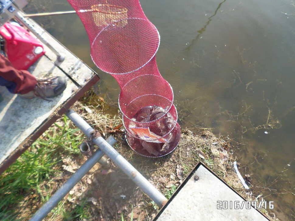 fish_pay_08412130.jpg