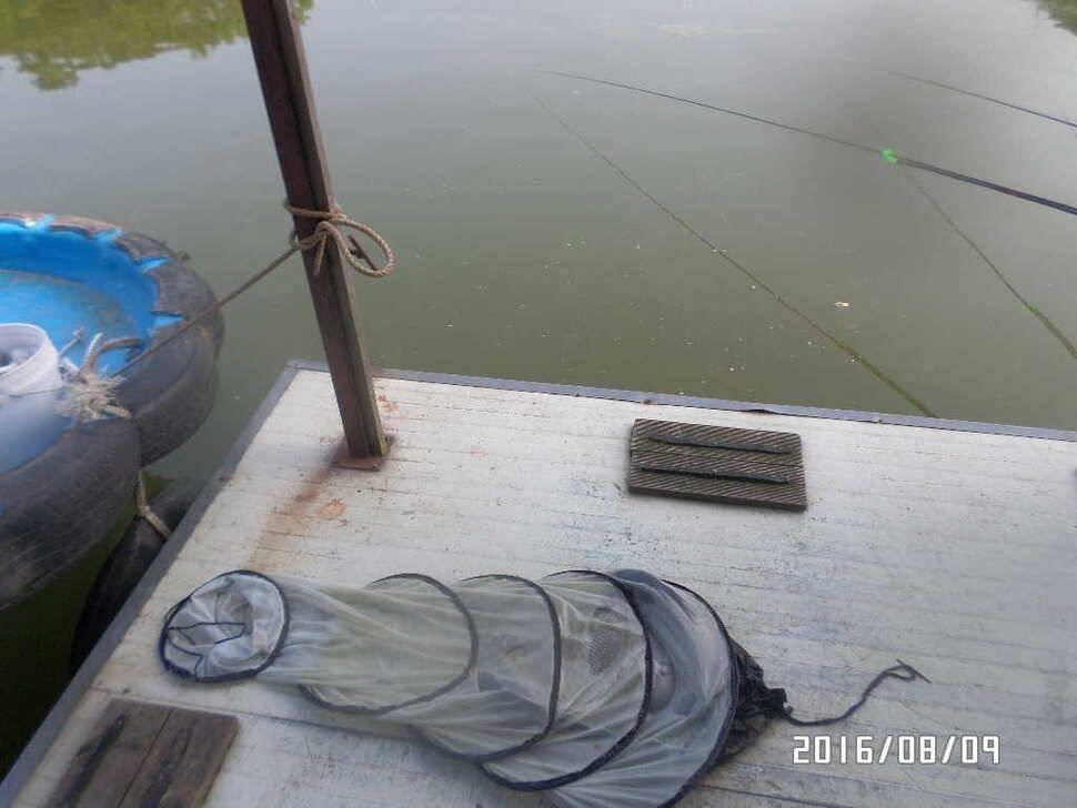 fish_pay_08412468.jpg