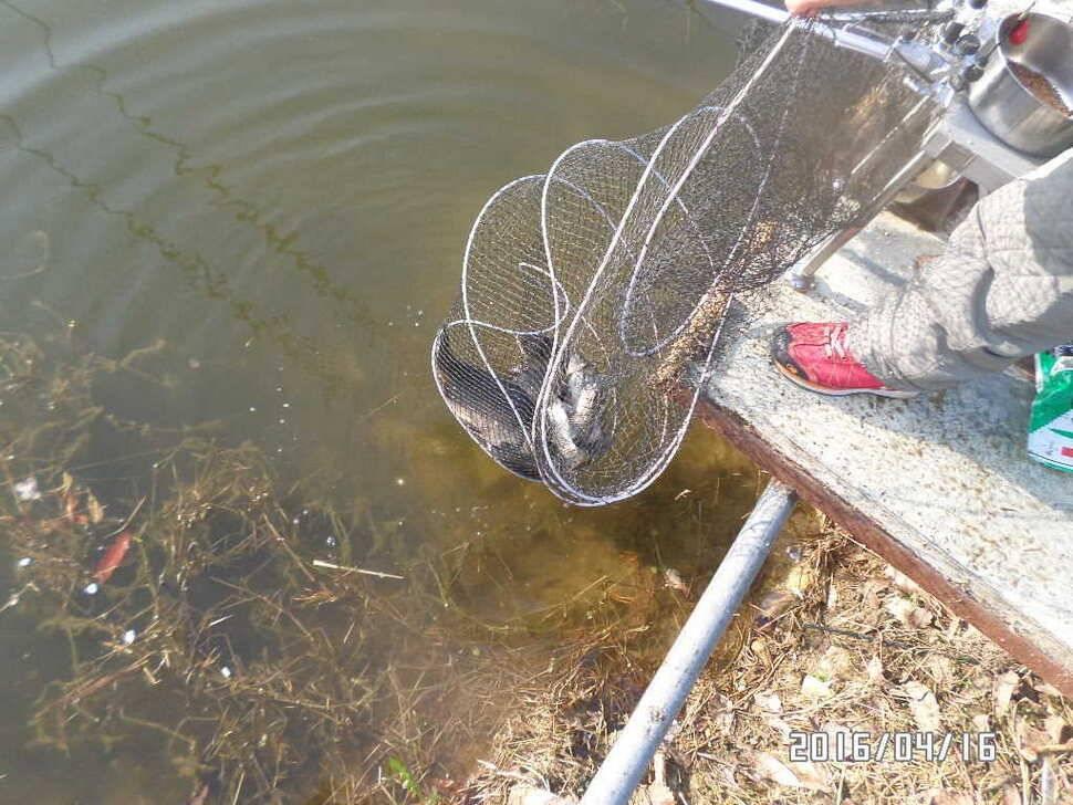 fish_pay_08412553.jpg
