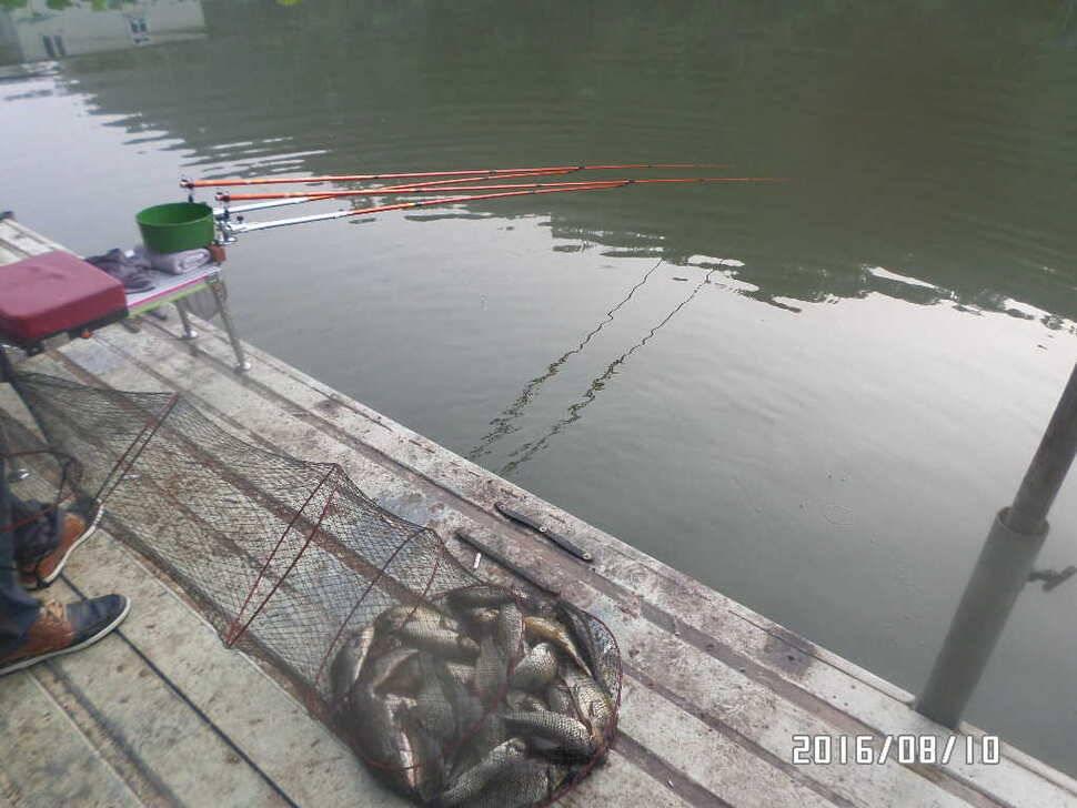fish_pay_08412949.jpg