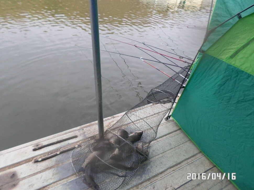 fish_pay_08413012.jpg