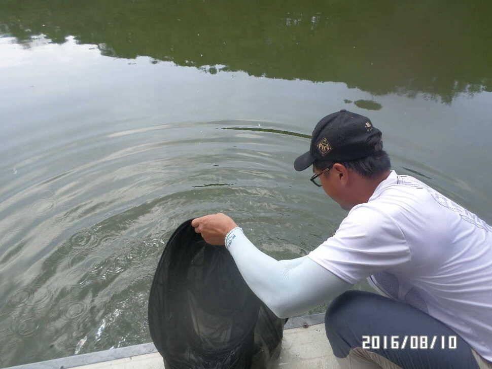fish_pay_08414386.jpg