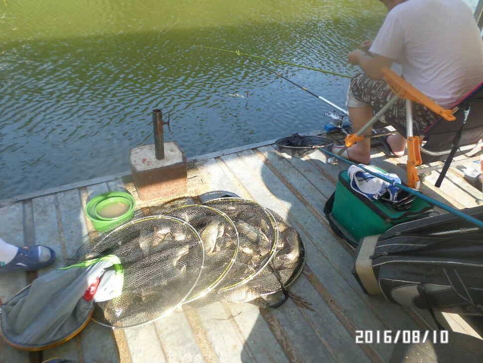fish_pay_08415869.jpg