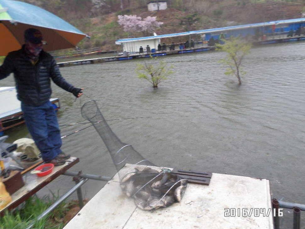 fish_pay_08415960.jpg