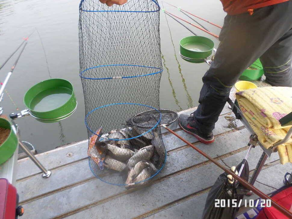 fish_pay_0847502.jpg