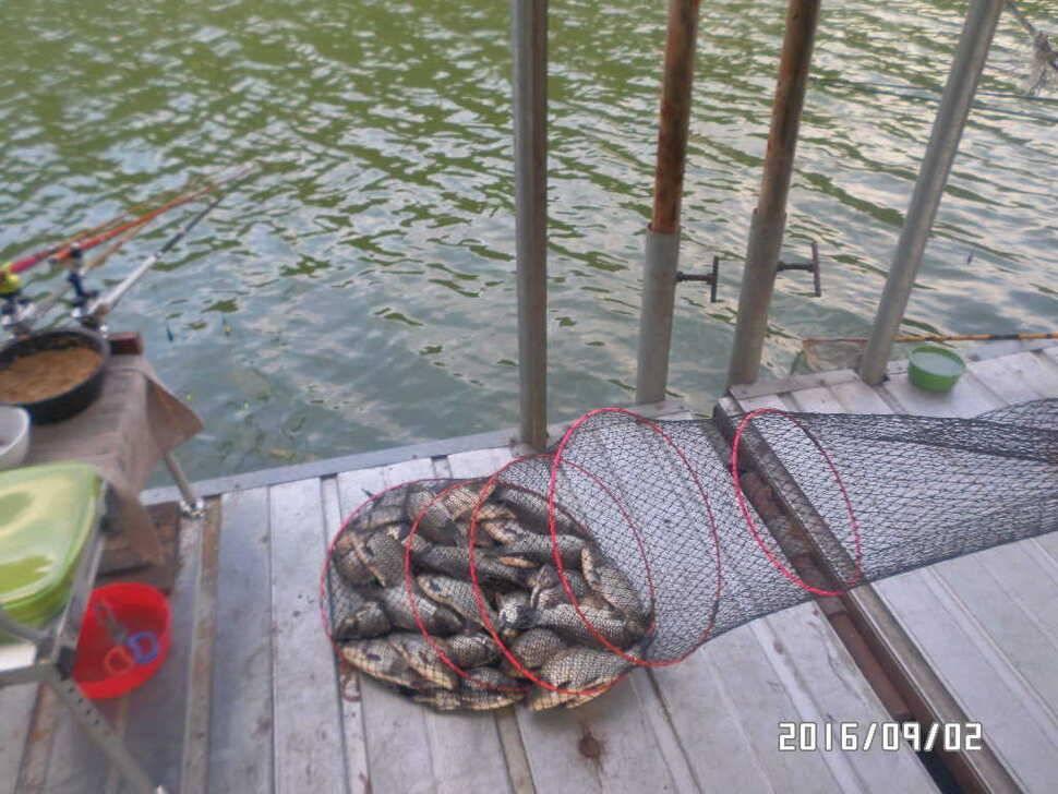 fish_pay_08585422.jpg