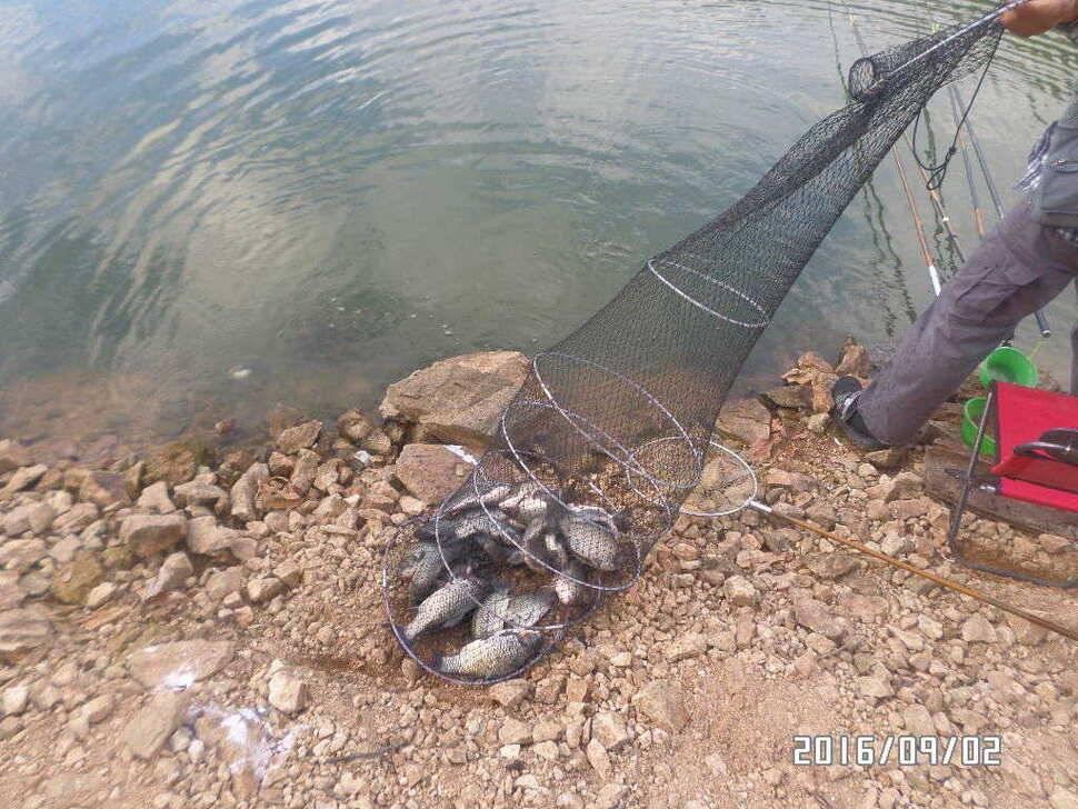 fish_pay_085859100.jpg