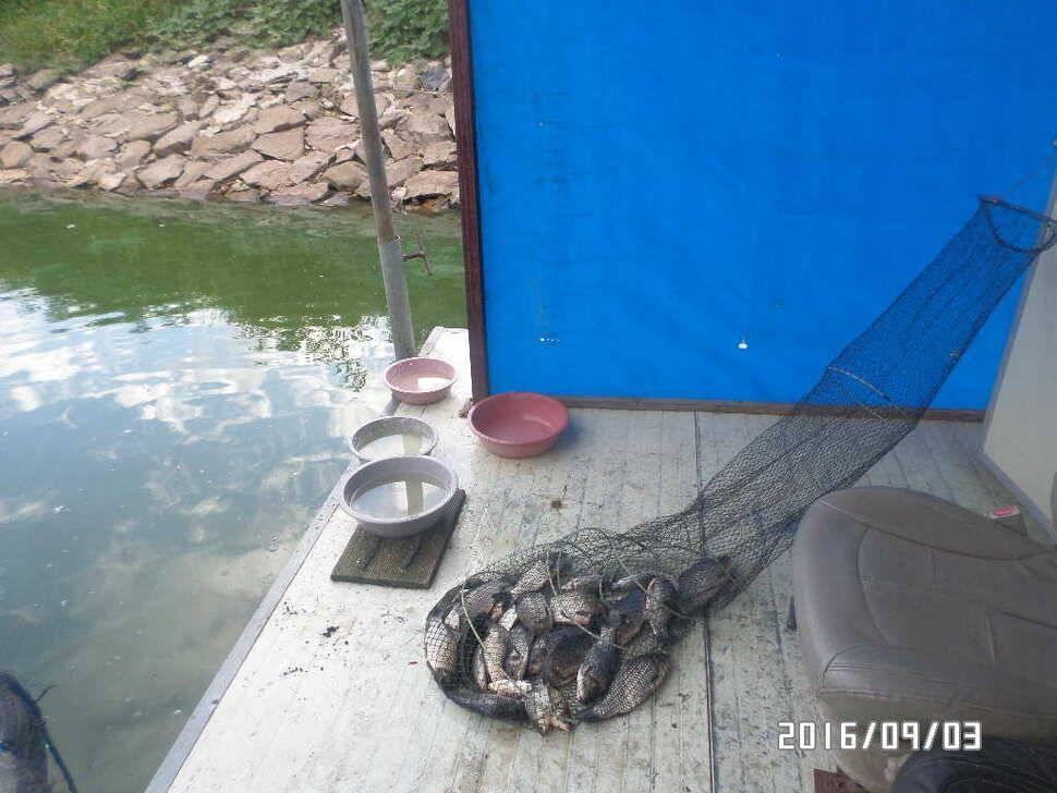 fish_pay_08591067.jpg