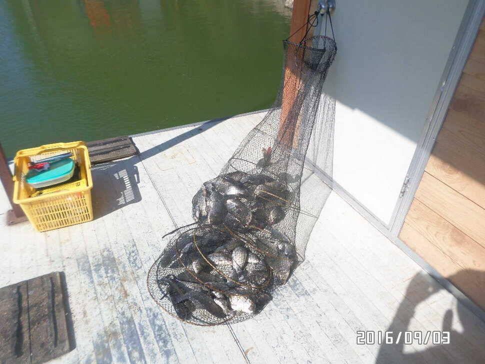 fish_pay_08592117.jpg