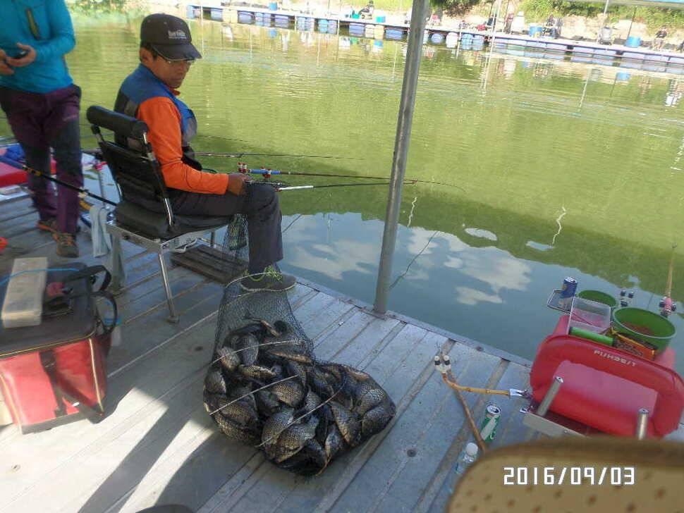 fish_pay_0859585.jpg