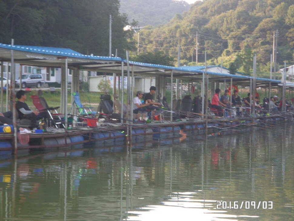 fish_pay_09000879.jpg