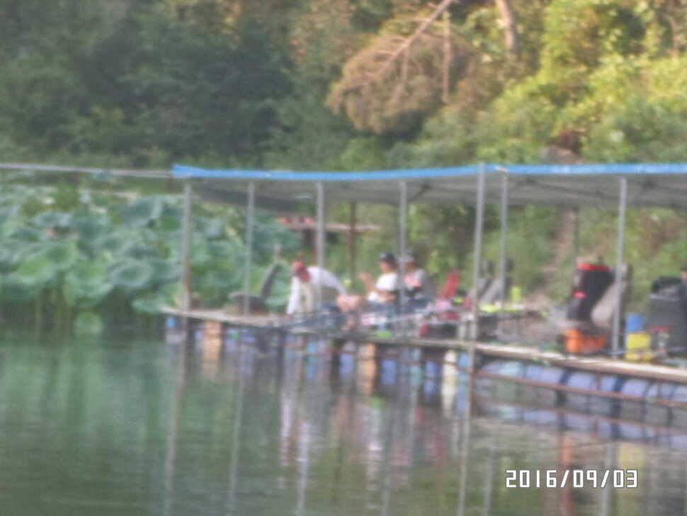 fish_pay_09001339.jpg